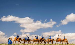 camel riding morocco